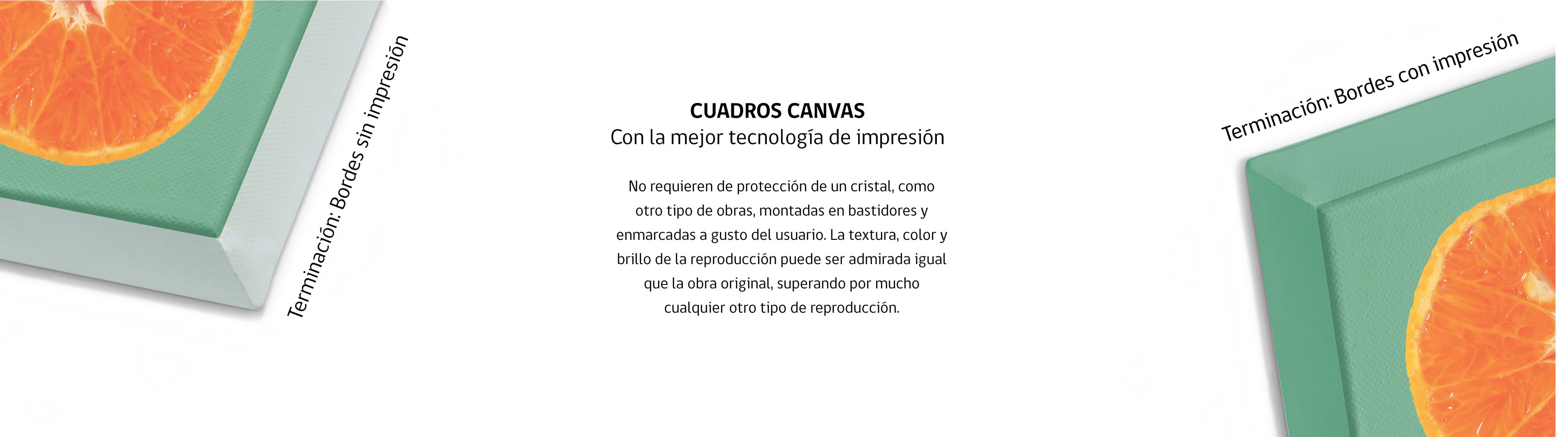 canvas 004