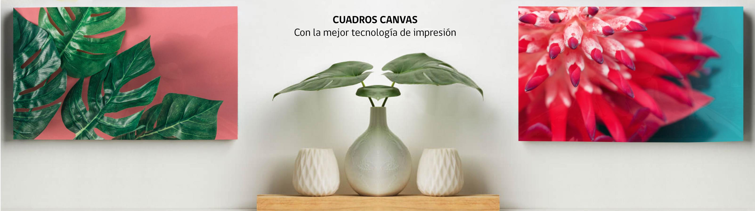 canvas impresión