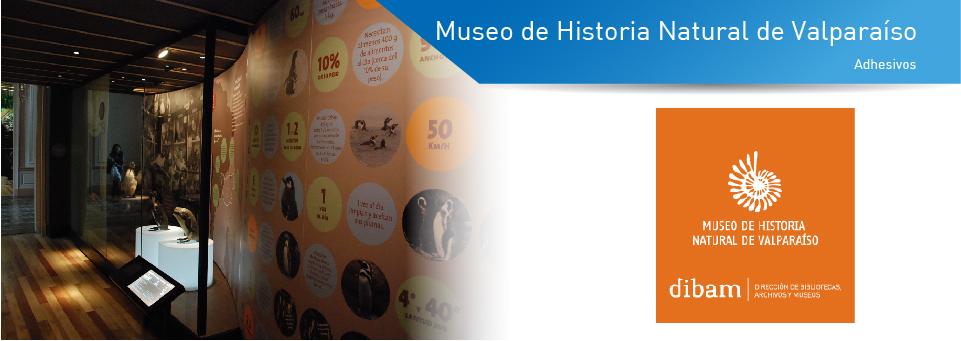 museo valpo